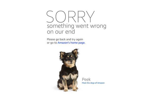 Su Amazon le pagine di errore mostrano i cani dei dipendenti